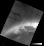 VIIRS DNB image of the aurora australis, 01:27 UTC 18 March 2015
